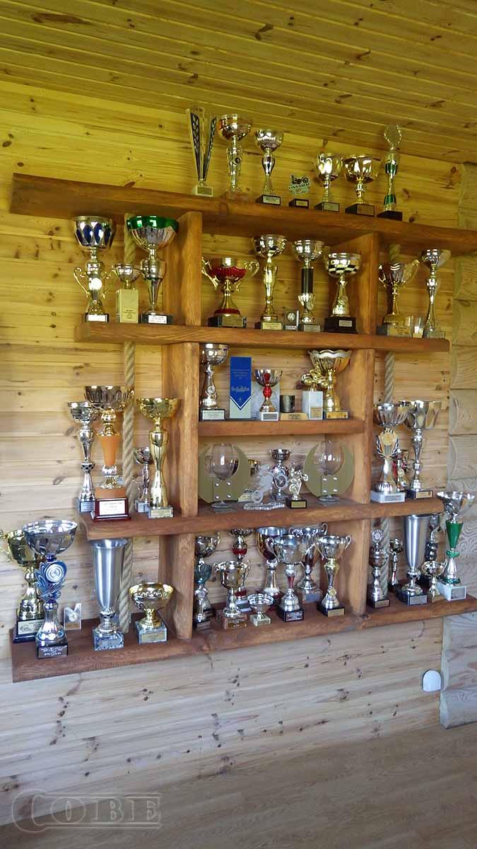 Trofee-riiul karikariiul Täispuit seina riiul puidust riiulid puitmööbel massiiv puit seina-riiul